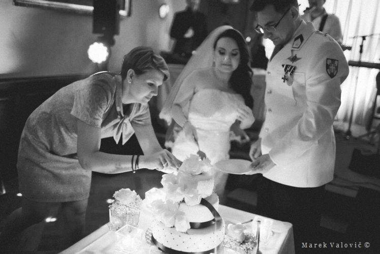 cake cutting with planner support