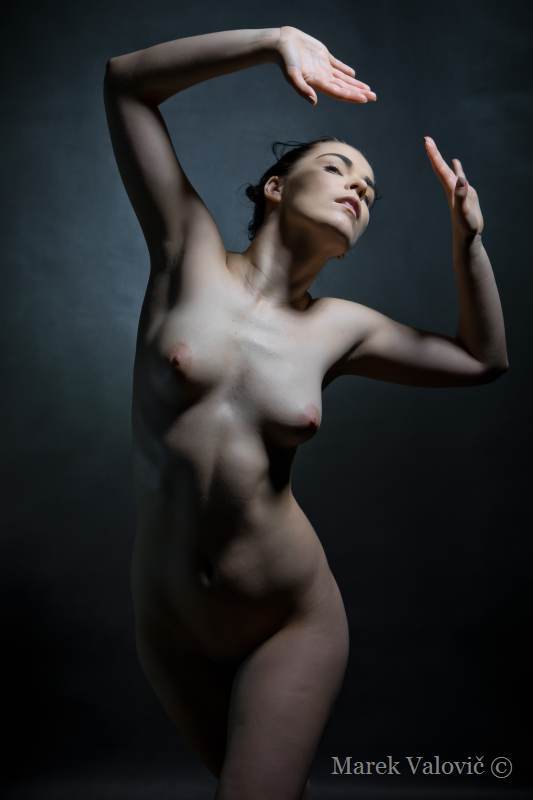 pose for artist nude woman figure for free
