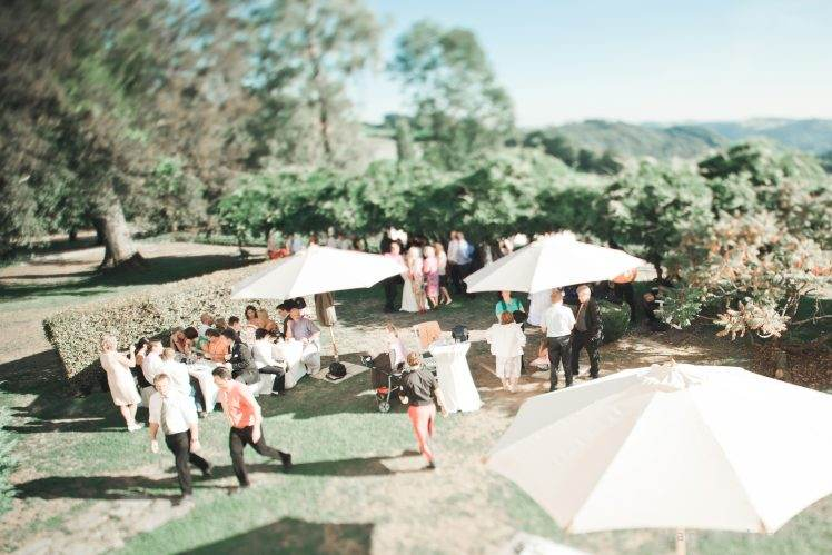 tilt shiftlens on wedding - wedding photographer
