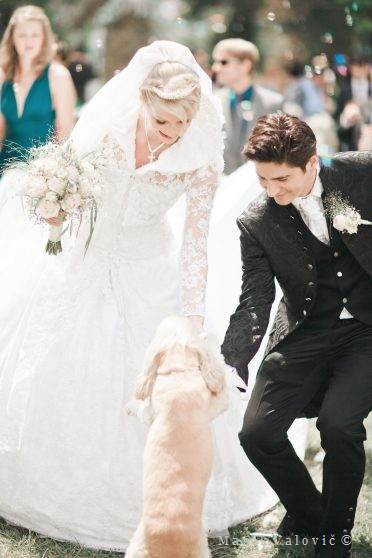 groom bride and dog - outdoor wedding Vienna