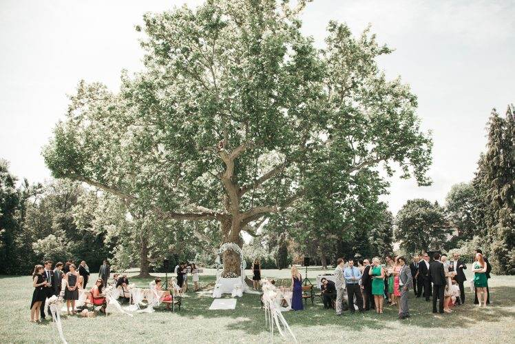 Wedding locality Vienna - Schloss Hetzendorf garden tree outdoor wedding